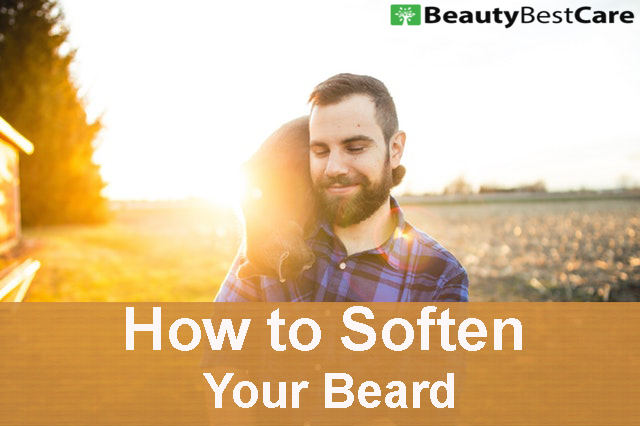 How To Soften Your Beard Complete Guide To Make A Beard Soft